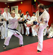 Dr Spitz Black Belt Test