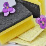 healthy living clean sponge
